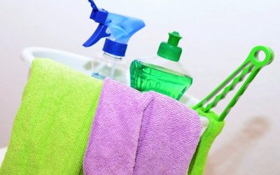 Limpieza y Mantenimiento de los Brumizadores.